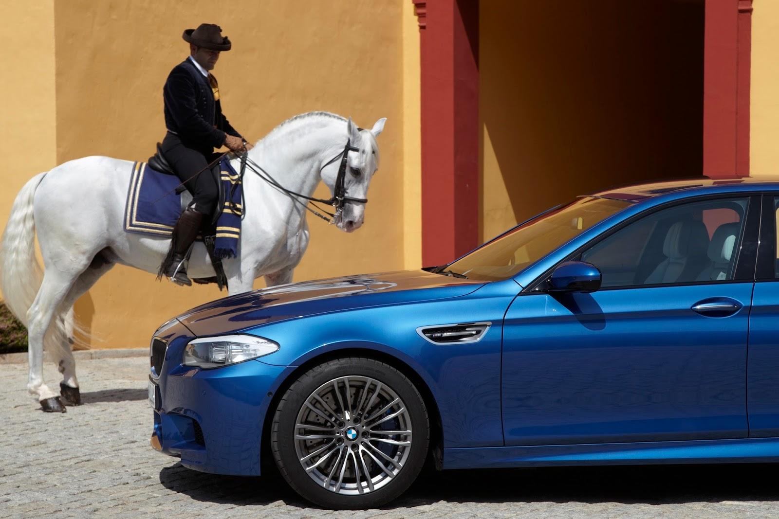 BMWの壁紙 M5