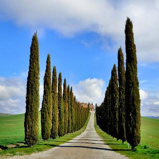 Castiglione d'Orcia, Tuscany, Italy
