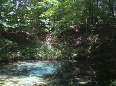 Youve been reviewed my visit to red clay state historic park in blue spring at red clay publicscrutiny Image collections