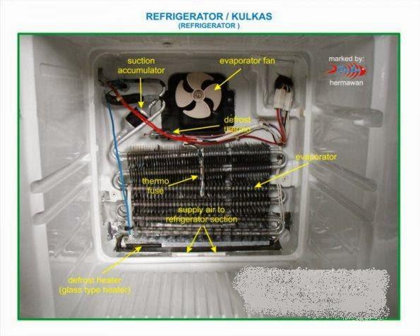 Skema kulkas 2 pintu polytron golf sandpoint elks lemari es 2 pintu atau biasa di sebut dengan kulkas tanpa bunga es no frost cheapraybanclubmaster Images