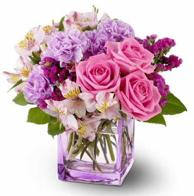 Beautiful Flowers Pictures Collections