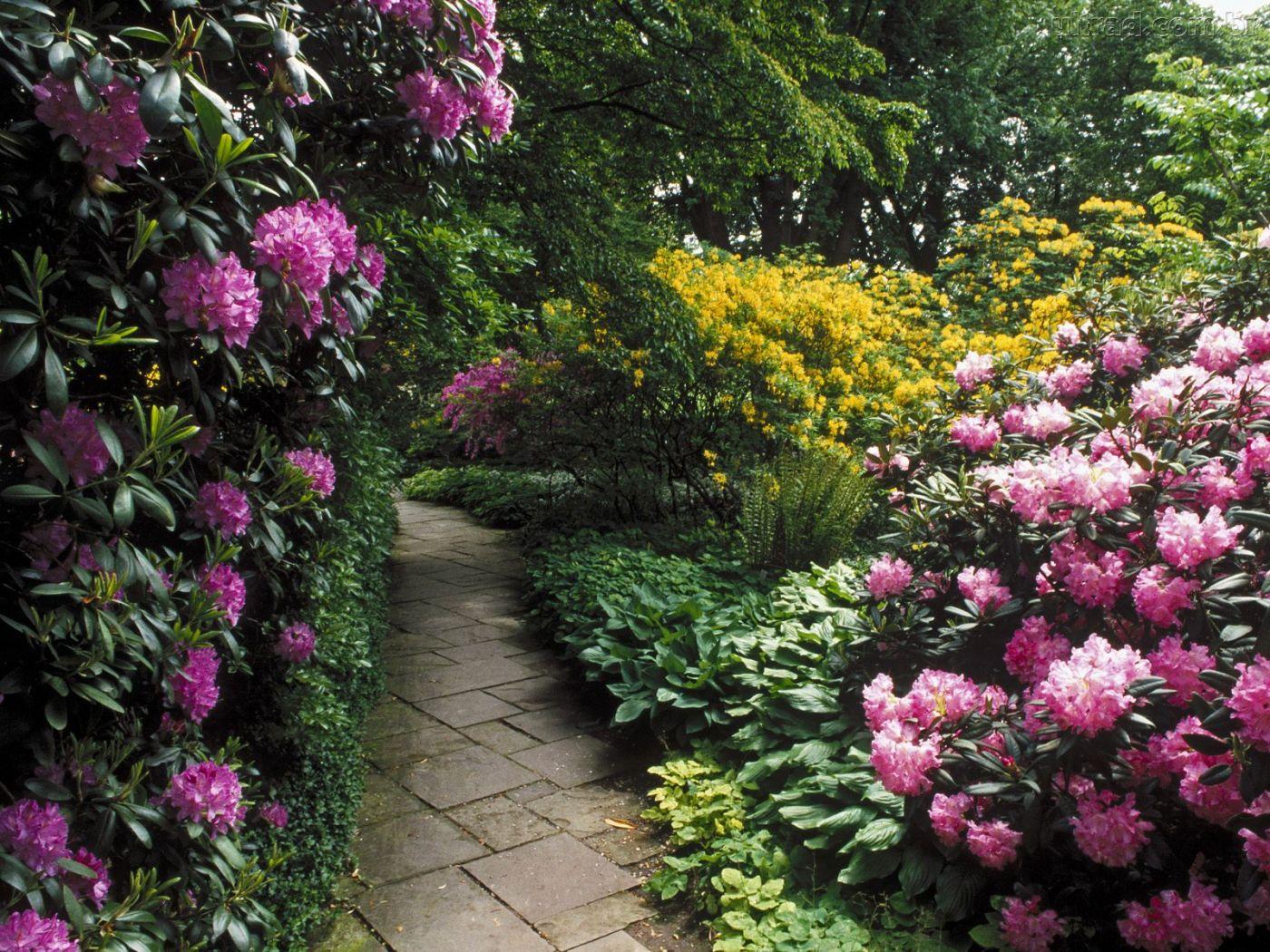 Ver a beleza caminhos com flores for Beautiful flower garden designs