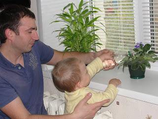 поливаем цветы  с папой