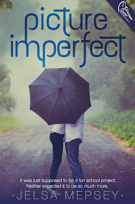 Cover Reveal: Picture Imperfect