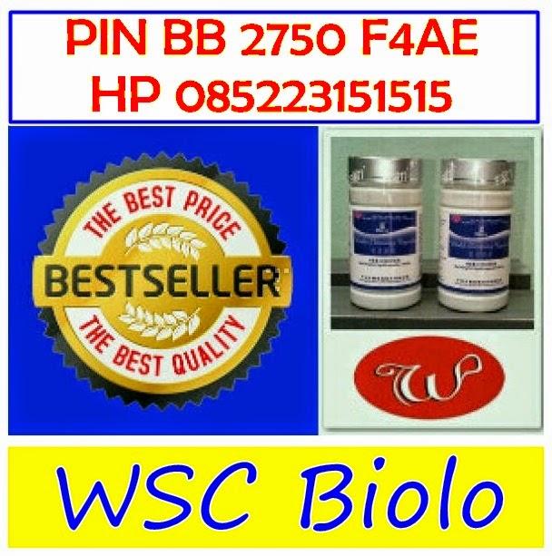 wsc-biolo-pelangsing-terbaik-terlaris