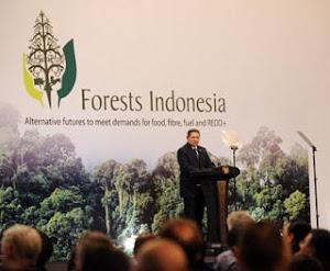 Konferensi Penyelamatan Hutan Indonesia