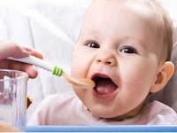 Piramida Makanan sehat untuk Bayi
