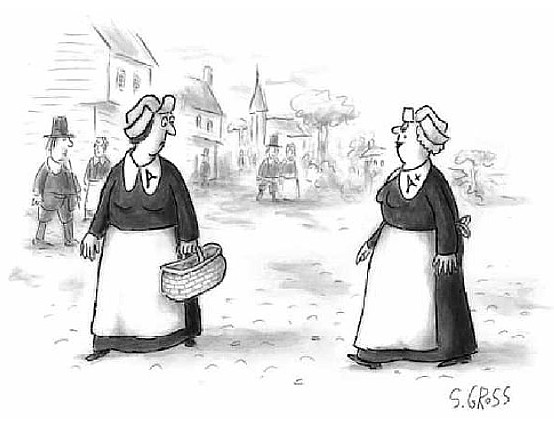 challenging conventions: cartoons about scarlet letter