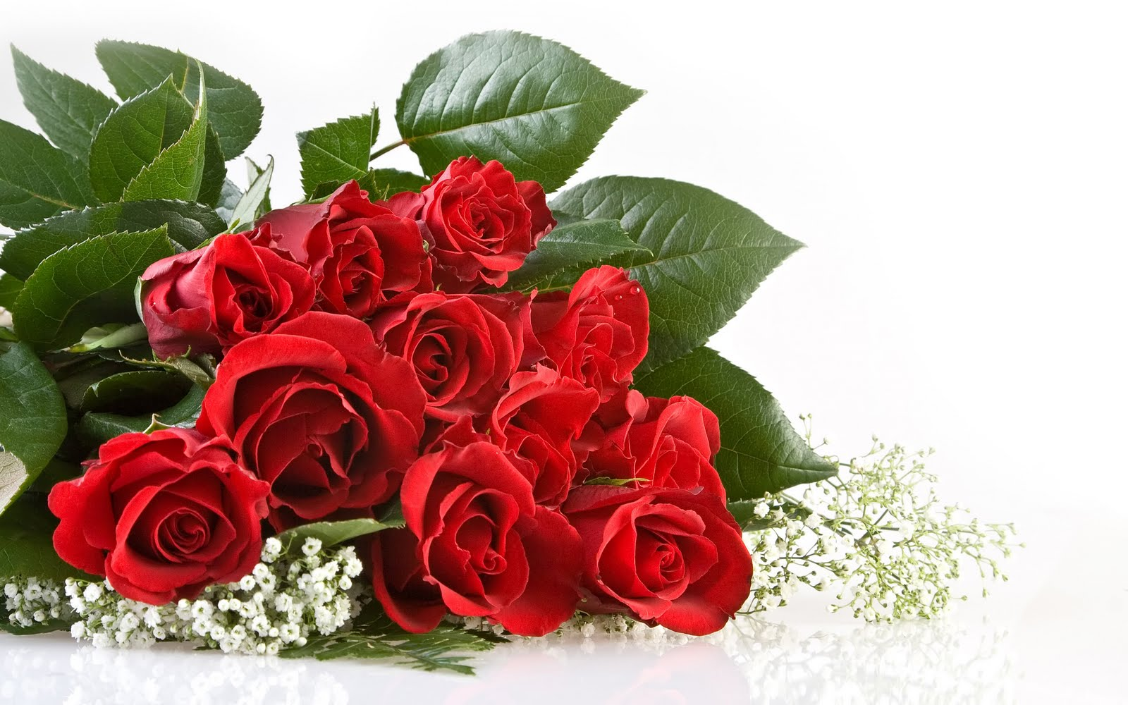 http://2.bp.blogspot.com/-gS8jqL69bU0/TaqGIjE7eeI/AAAAAAAAAB4/BL1zyGt9JV0/s1600/The-best-top-desktop-roses-wallpapers-hd-rose-wallpaper-46-bunch-of-red-roses.jpg