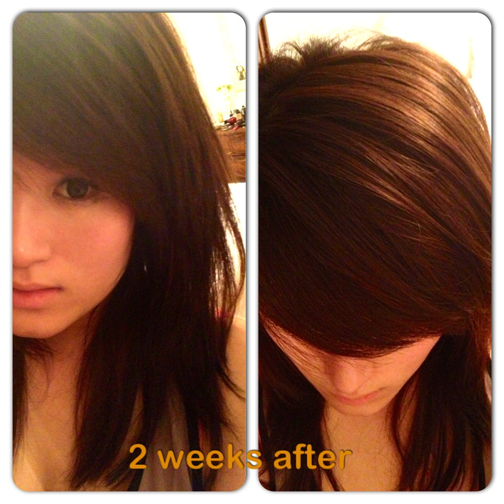 Kayleighs Bits And Bobs Clairol Nice N Easy Colour Blend Foam 5g