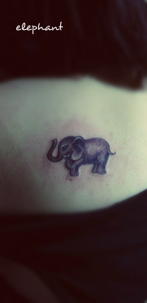 cute lifelike baby elephant tattoo on the back