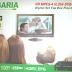 PAGARIA PER-HDS2-1777 HD MPEG-4 H.264 DVB-S2 Receiver