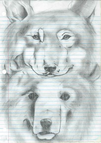 Bear/Wolf