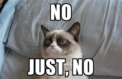 [Image: grumpy-cat-saying-no%20(4).jpg]