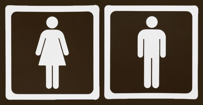 La esquizofrenia ¿Hay diferencias de género en la esquizofrenia? -> Boneco Banheiro Feminino