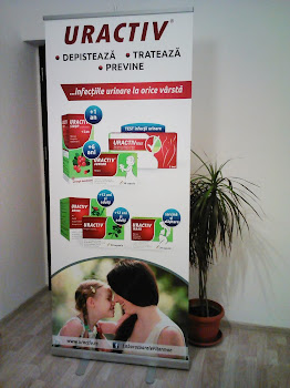 roll-up standard / classic 85x200cm