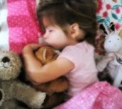http://lovelywithaside.blogspot.com/2013/11/no-stuffed-animals.html