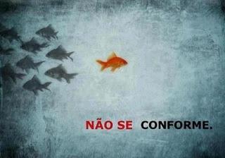 A Coragem de não se conformar.