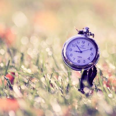 afinal ha e que ter paciaancia dar tempo ao tempo ja deva amos ter aprendido e de uma vez para sempre que o destino tem de fazer muitos rodeios para
