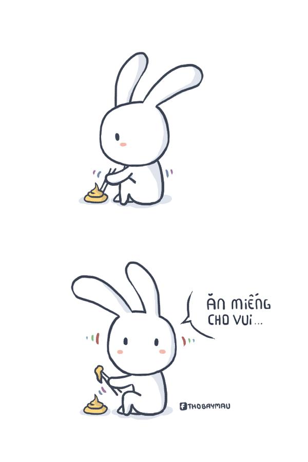 Tải ảnh chế Thỏ 7 Màu vui hài hước comment facebook