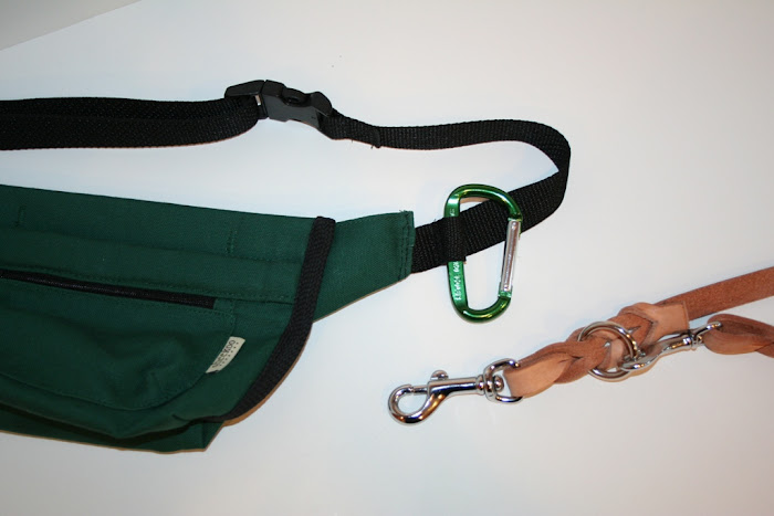 loop in the black webbing strap showing a carabiner and a tan leash