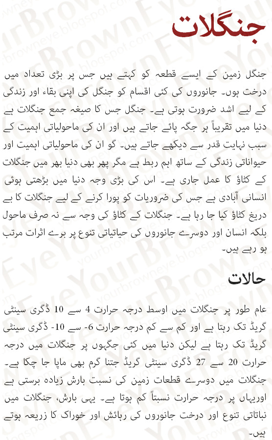 northern areas of pakistan essay in english