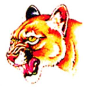 Tattoo Tiger yellow