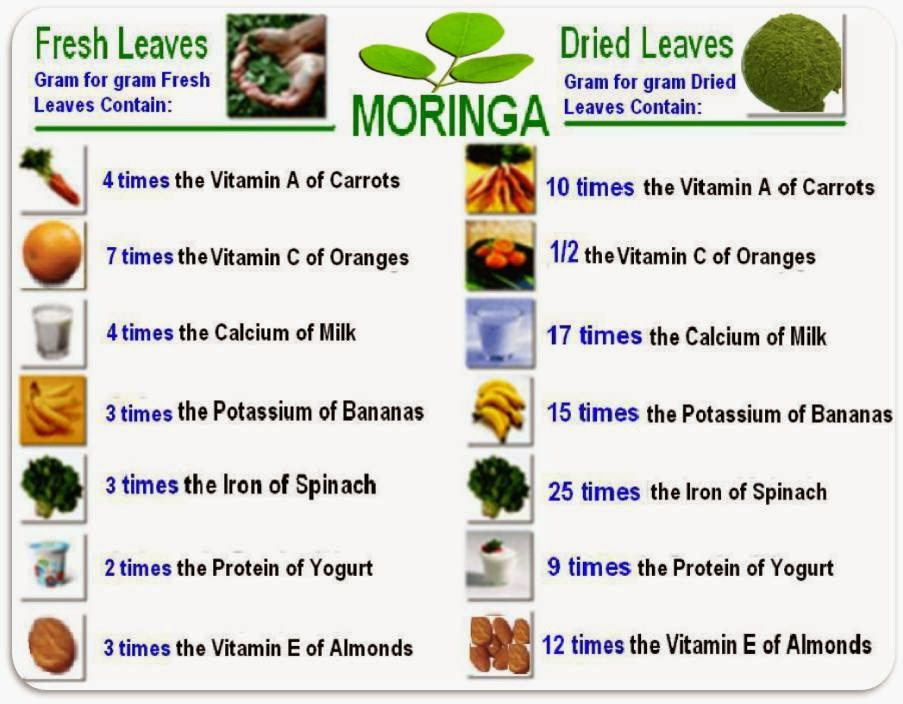 malunggay can be used as water The seeds act as a sort of coagulant: unwanted material bunches together as it  comes into contact with the moringa and can't pass through the.