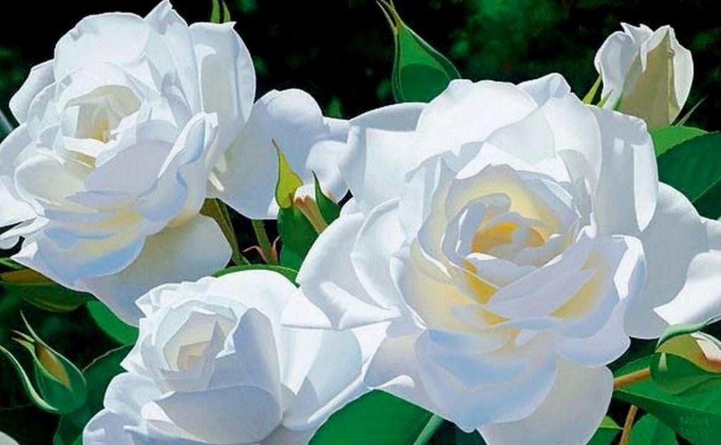 Cuadros, pinturas, oleos: Arte: Pinturas flores bonitas