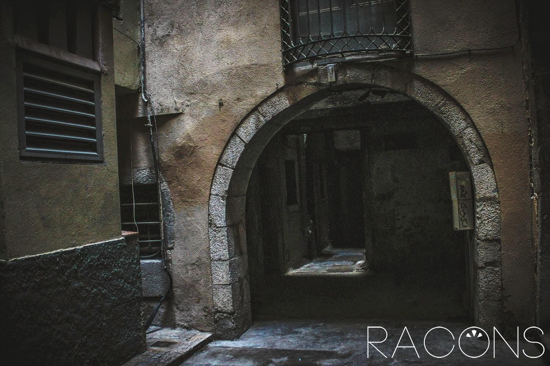 Aracada i interior de la plaça dels raïms girona