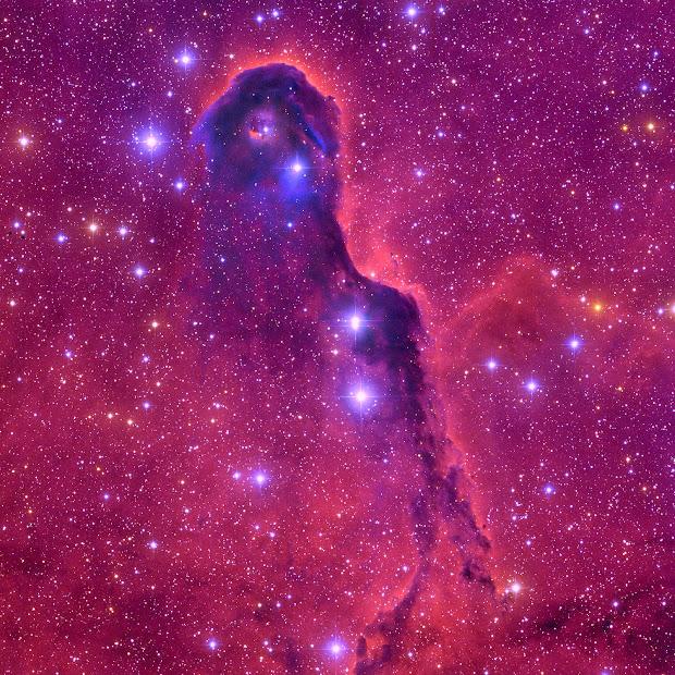 IC1396 - The Elephant Trunk Nebula
