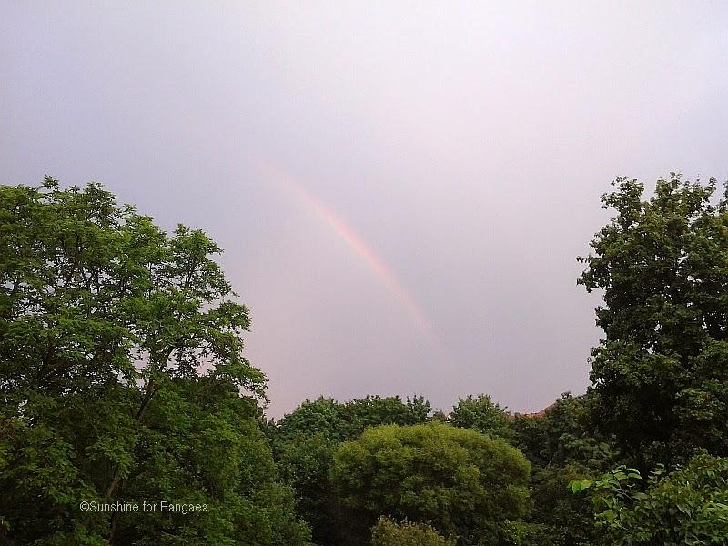 Rainbow over a park