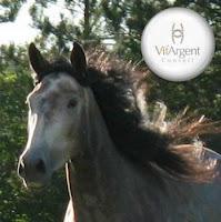 Le Cheval au Naturel  The Natural Horse