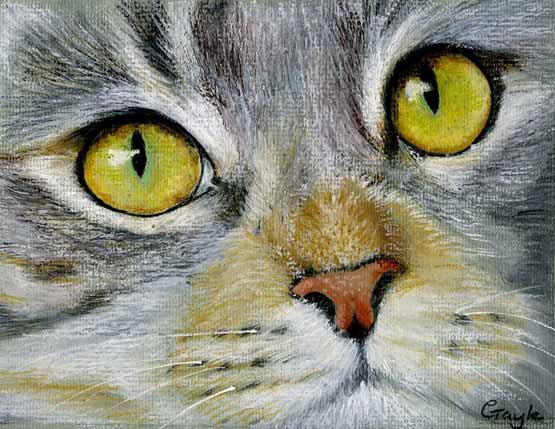 رسم قطة بالباستيل