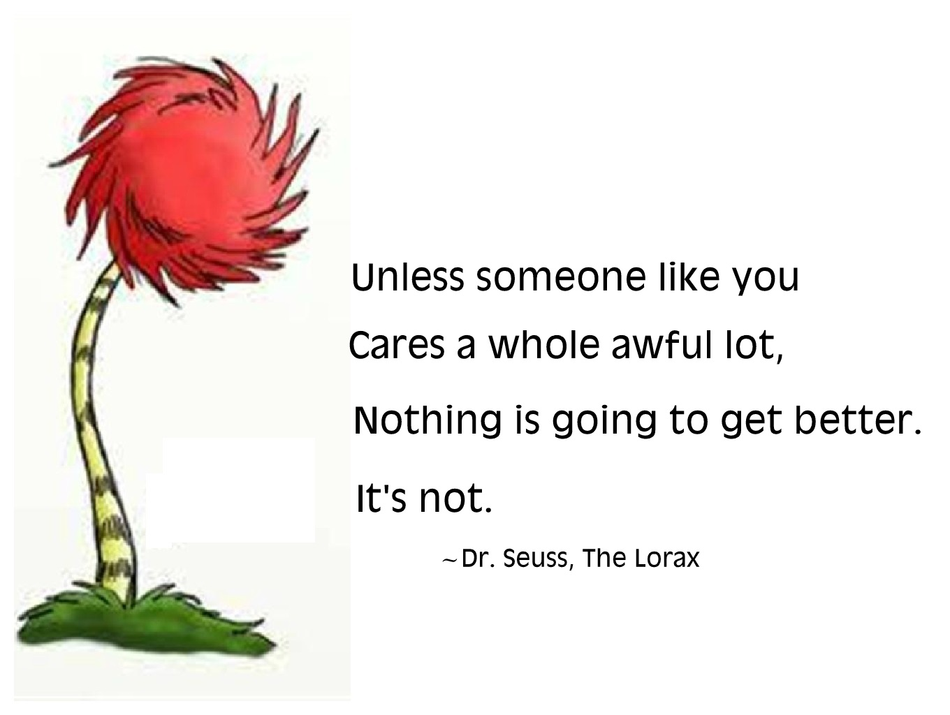 werdyab blog how to make a dr seuss costume the lorax