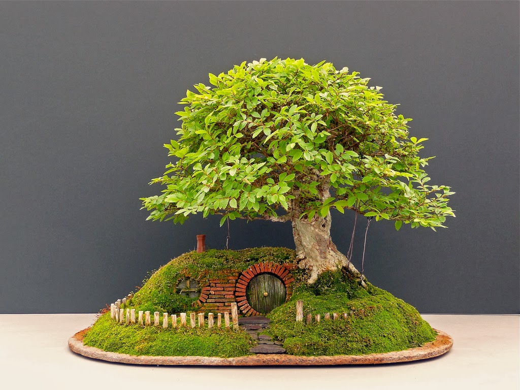 The Hobbit Movie News Amazing Bonsai Tree Hobbit Hole Is Fit For