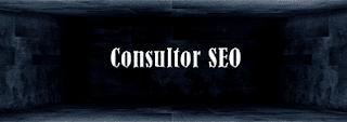 Consultor SEO Profesional