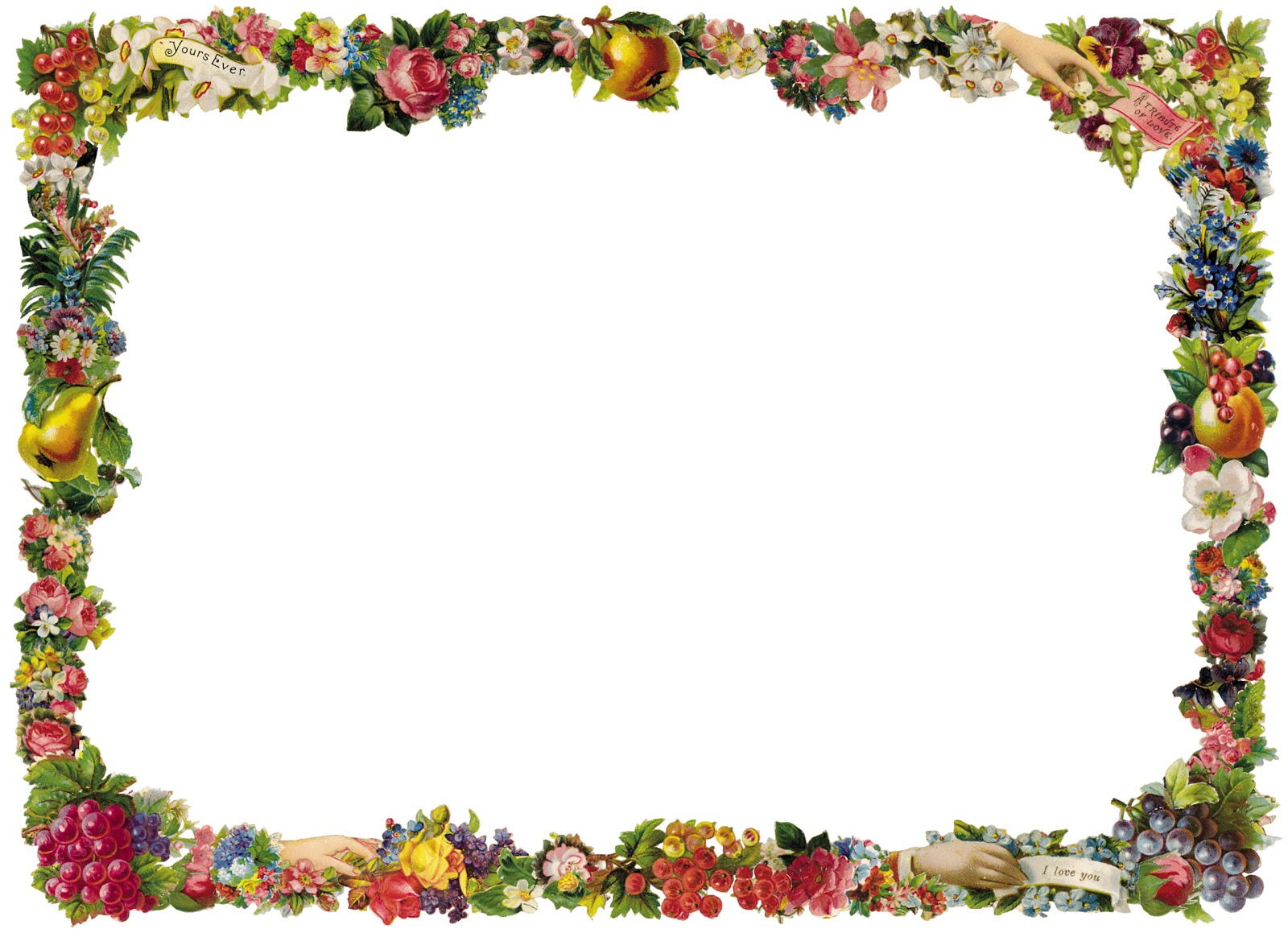 Vintage Fruit and Flower Frame