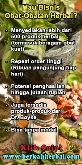 Bisnis Obat Herbal