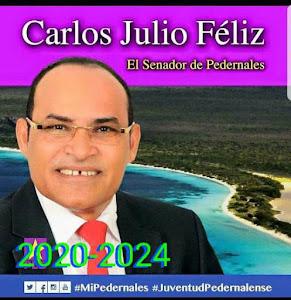 Carlos Julio Féliz