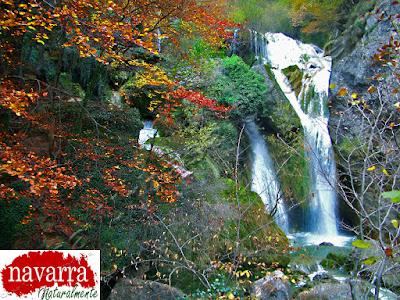 La Cascada del Elefante es la cascada más grande del Nacedero del Río Urederra, situado en Baquedano, en el Valle de Améscoa, en la Comarca Turística de Urbasa Estella y los Parques de la Naturaleza en Navarra Naturalmente.