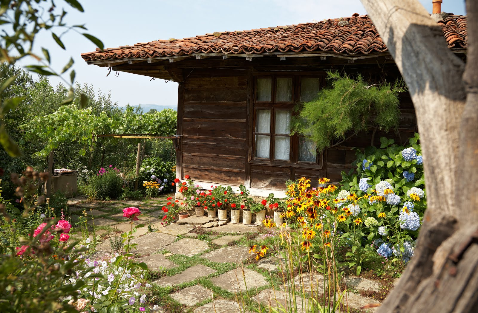 Banco de im genes vieja casa campestre de madera en - El jardin en casa ...