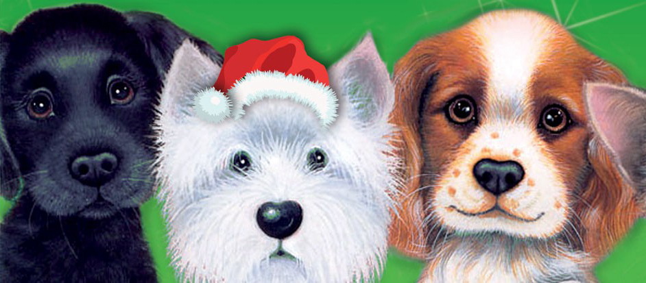 Give-a-Dog-a-Bone-Christmas-Appeal-2015
