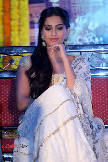 Sonam Kapoor Latest Pictures in a Designer Dress at Raanjhanaa Movie Press Meet ~ Celebs Next