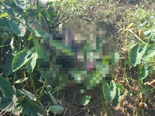 Lái xe ôm nghi bị giết hại rồi đốt xác phi tang