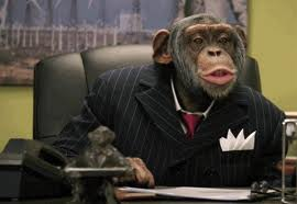 Corporate Chimp