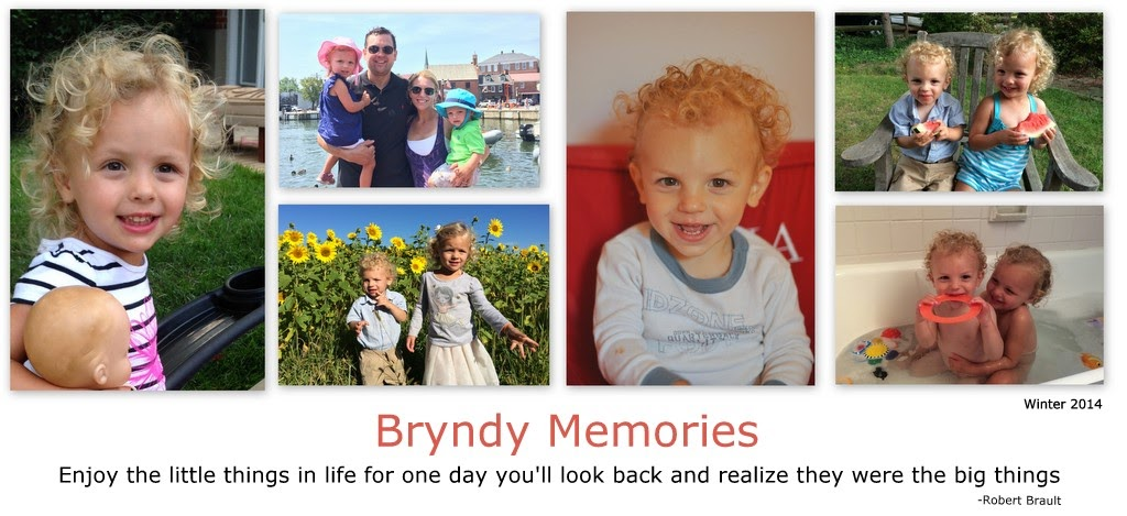 Bryndy's Memories