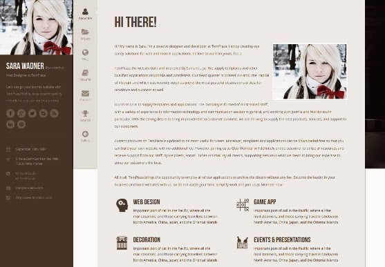 Profiler vCard Resume Joomla Template