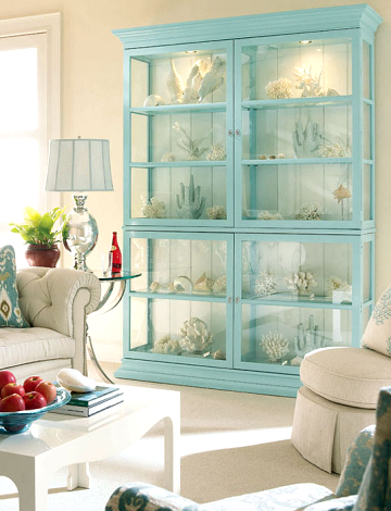 sea collections in glass cabinet