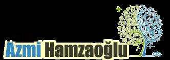 Prof. Dr. Azmi Hamzaoğlu Web Sitesi